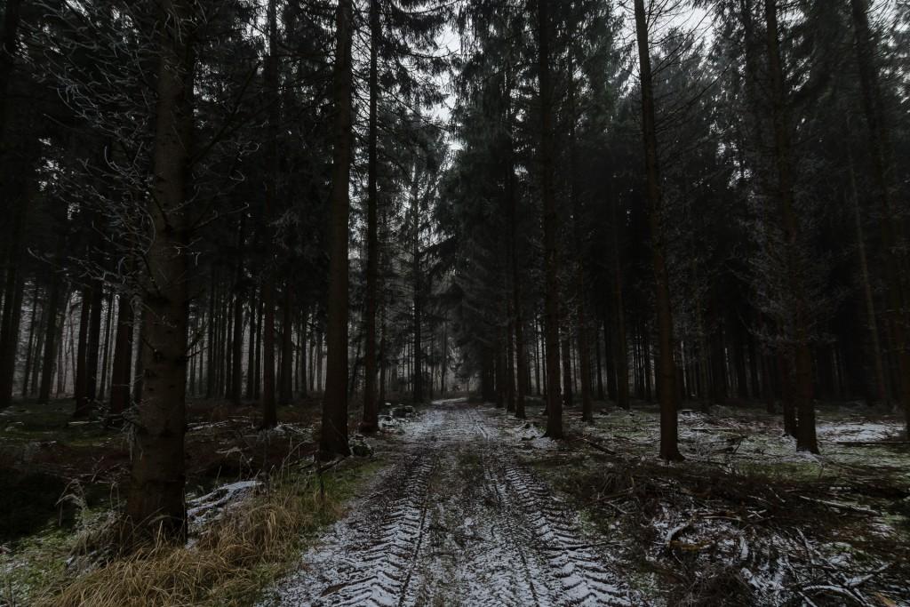The Path 2 Jonas Hartz Photography Gütersloh Fotografie Bielefeld OWL